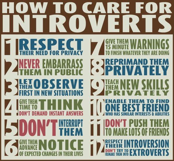 introvert entrepreneur